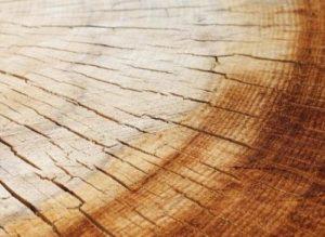 legno materia prima viva per i mobili